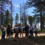Teacher training at the Borden Memorial Forest west of Fort Collins, Colorado