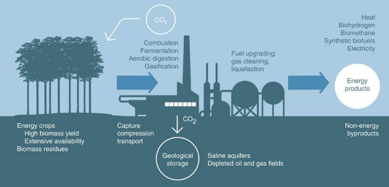 Bioenergy with Carbon Capture and Storage (BECCS). Image from Berkeley News